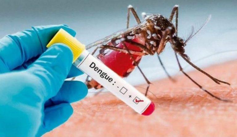 Dengue também é uma doença perigosa que precisa ser combatida